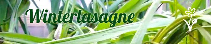 Winterlasagne | Gartengemüsekiosk Youtube