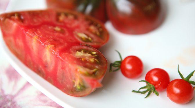 Tomaten selber anbauen | Riesentomaten
