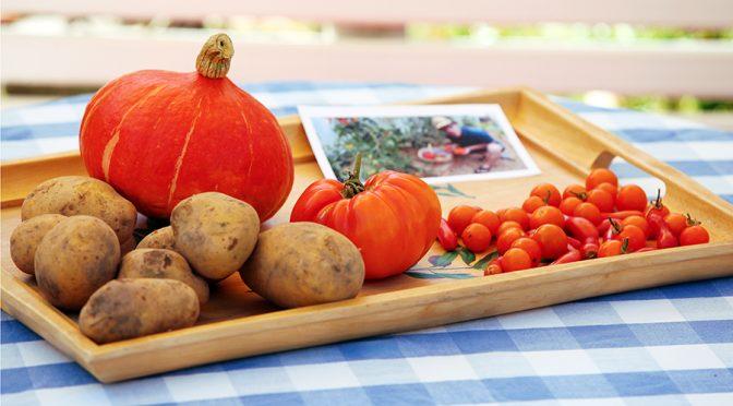 Kürbisgnocchi, vegan und glutenfrei