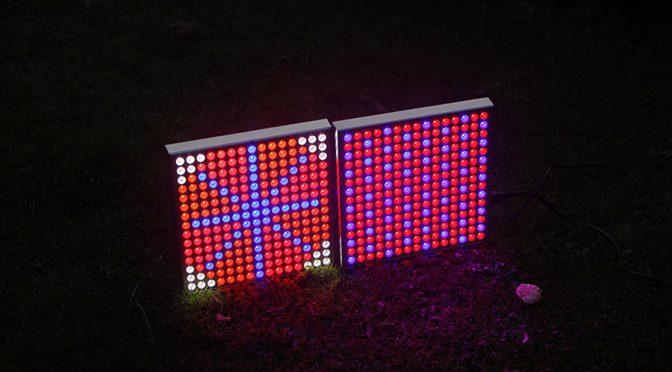 LED-Pflanzenlicht, neue Leuchte im Test