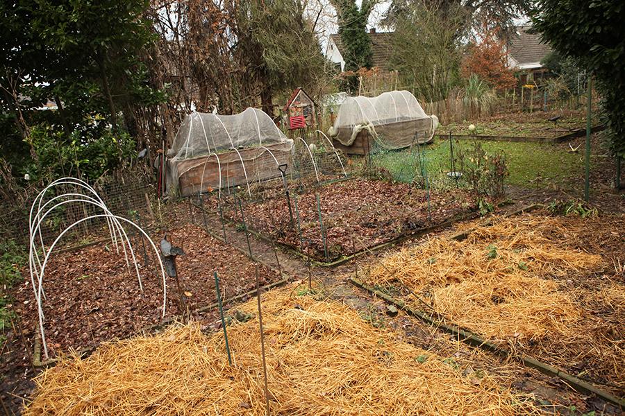 Gartenrundgang Dezember
