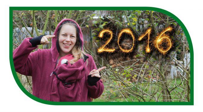 Jahresrückblick 2016,