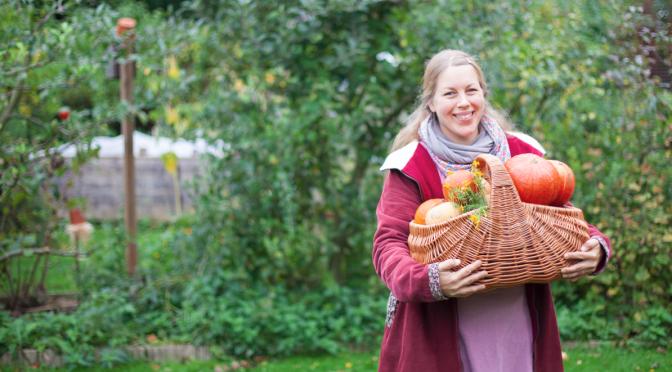 Garten Tipps November