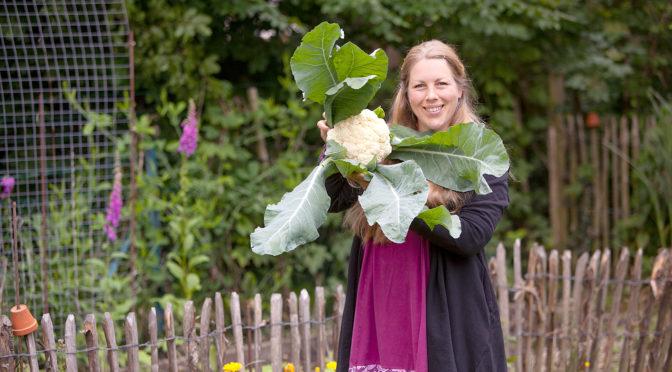Das Gemüsebeet im Gartenrundgang Juni