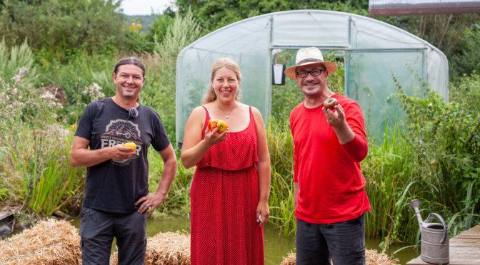 Tomatenanbautipps vom Experten Teil 2